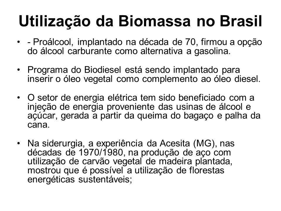Utilização da Biomassa no Brasil - Proálcool, implantado na década de 70, firmou a opção do álcool carburante como alternativa a gasolina. Programa do