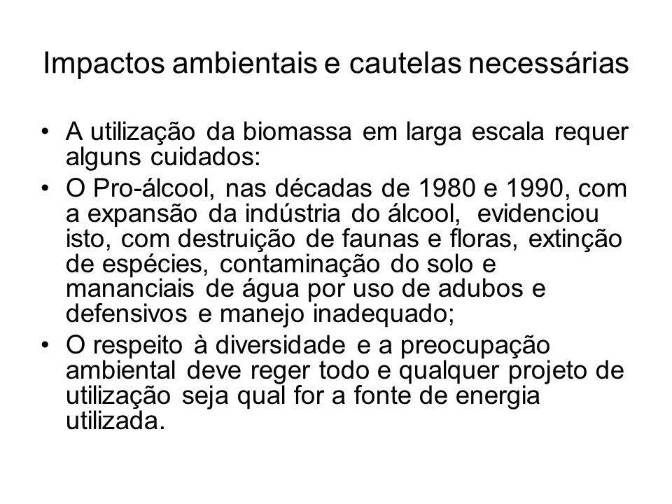 Impactos ambientais e cautelas necessárias A utilização da biomassa em larga escala requer alguns cuidados: O Pro-álcool, nas décadas de 1980 e 1990,