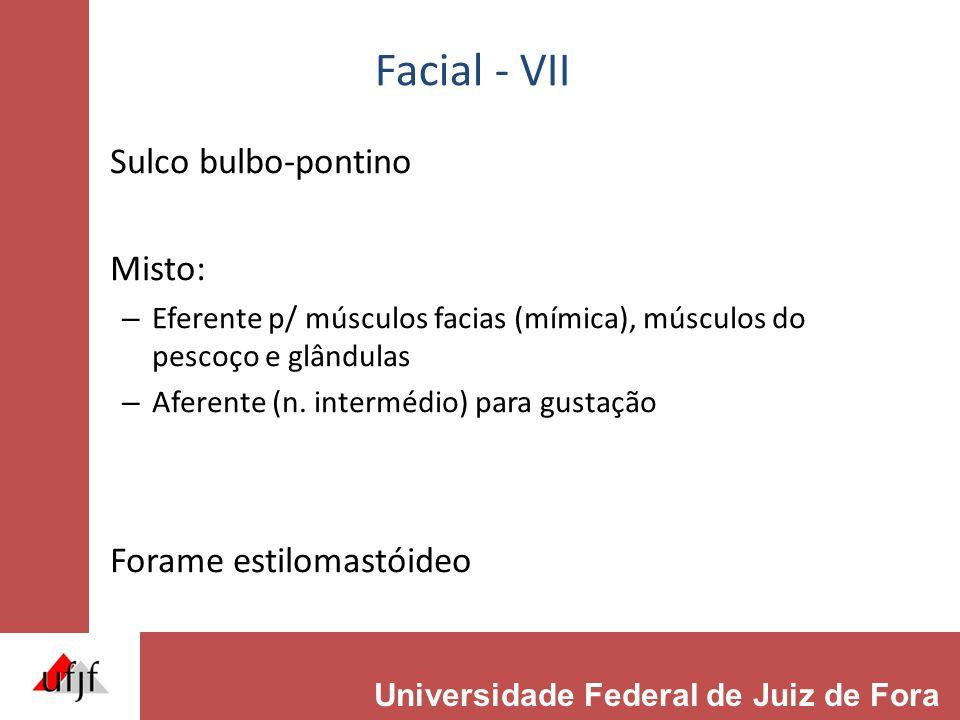 Facial - VII Sulco bulbo-pontino Misto: – Eferente p/ músculos facias (mímica), músculos do pescoço e glândulas – Aferente (n. intermédio) para gustaç