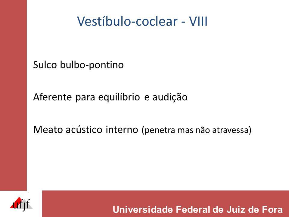 Vestíbulo-coclear - VIII Sulco bulbo-pontino Aferente para equilíbrio e audição Meato acústico interno (penetra mas não atravessa) Universidade Federa