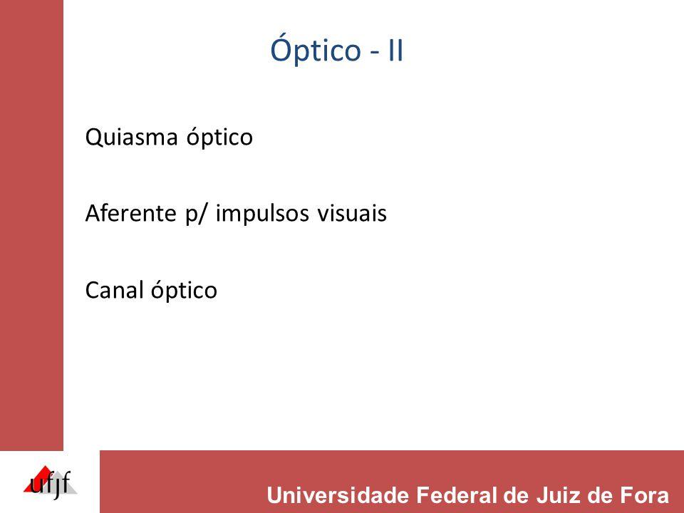 Óptico - II Quiasma óptico Aferente p/ impulsos visuais Canal óptico Universidade Federal de Juiz de Fora