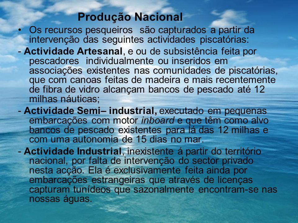 Produção Nacional Os recursos pesqueiros são capturados a partir da intervenção das seguintes actividades piscatórias: - Actividade Artesanal, e ou de