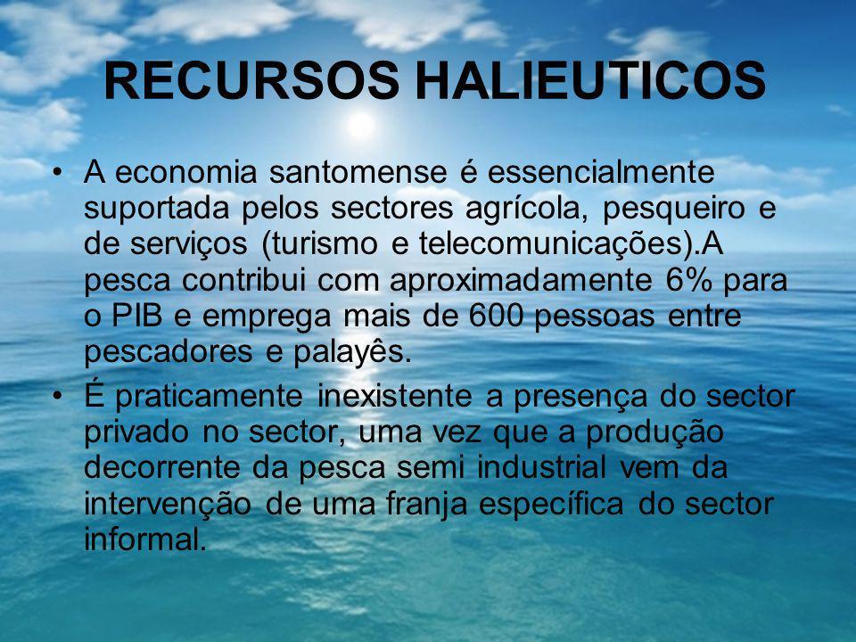 RECURSOS HALIEUTICOS A economia santomense é essencialmente suportada pelos sectores agrícola, pesqueiro e de serviços (turismo e telecomunicações).A