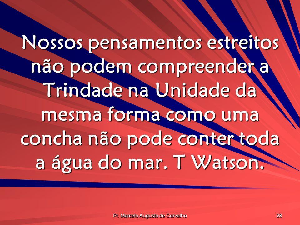 Pr. Marcelo Augusto de Carvalho 28 Nossos pensamentos estreitos não podem compreender a Trindade na Unidade da mesma forma como uma concha não pode co