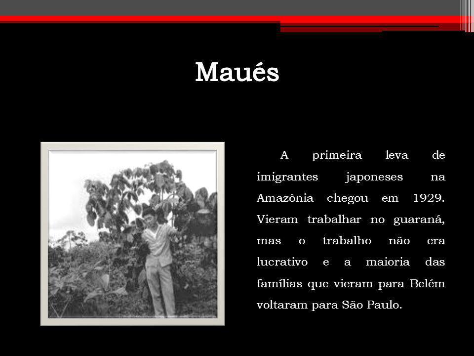 A primeira leva de imigrantes japoneses na Amazônia chegou em 1929. Vieram trabalhar no guaraná, mas o trabalho não era lucrativo e a maioria das famí