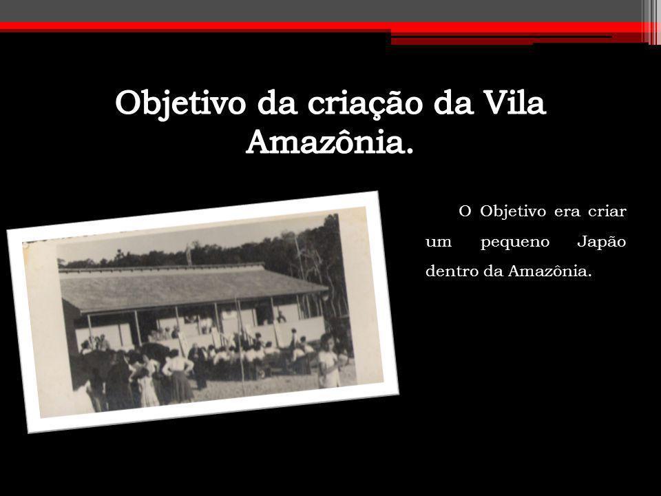 O Objetivo era criar um pequeno Japão dentro da Amazônia.
