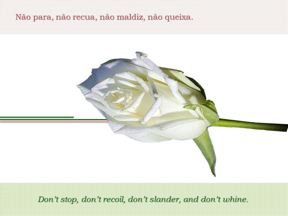Não para, não recua, não maldiz, não queixa. Don't stop, don't recoil, don't slander, and don't whine.