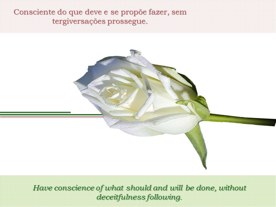 Consciente do que deve e se propõe fazer, sem tergiversações prossegue. Have conscience of what should and will be done, without deceitfulness followi