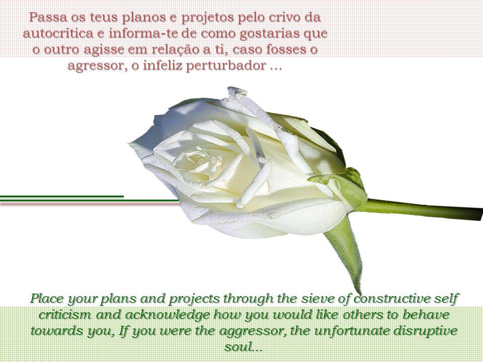 Passa os teus planos e projetos pelo crivo da autocrítica e informa-te de como gostarias que o outro agisse em relação a ti, caso fosses o agressor, o infeliz perturbador...