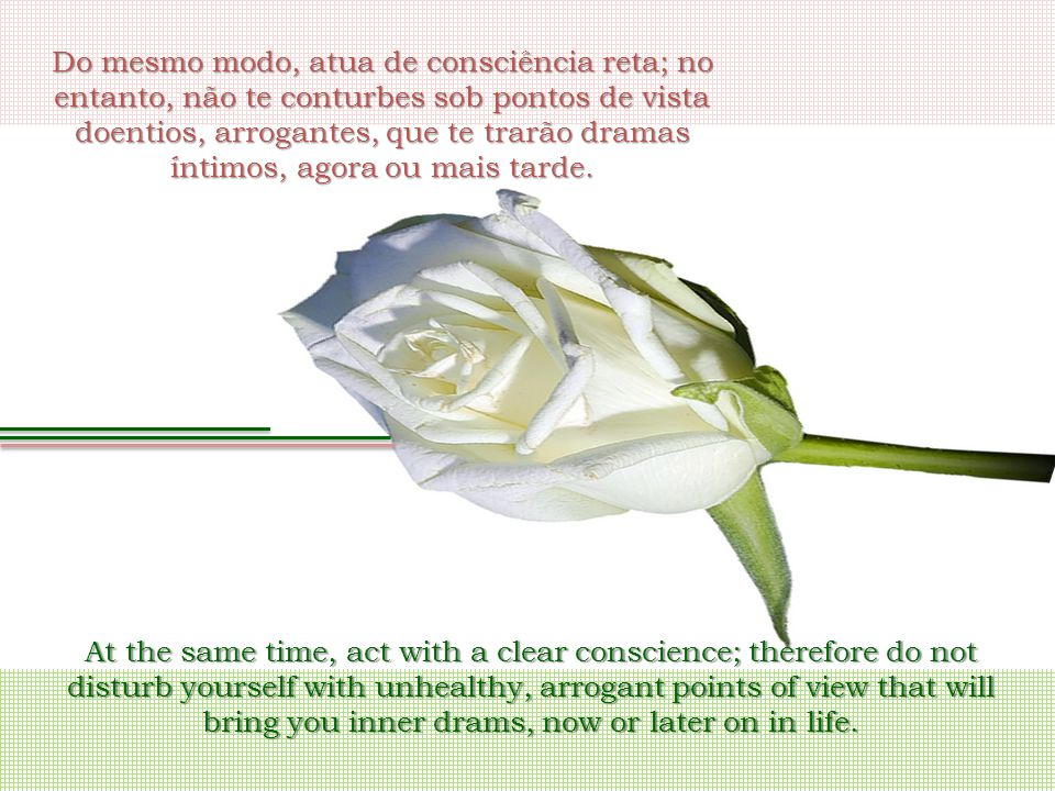 Do mesmo modo, atua de consciência reta; no entanto, não te conturbes sob pontos de vista doentios, arrogantes, que te trarão dramas íntimos, agora ou mais tarde.
