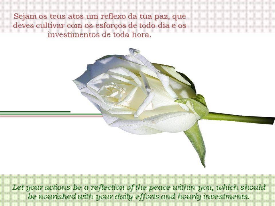 Sejam os teus atos um reflexo da tua paz, que deves cultivar com os esforços de todo dia e os investimentos de toda hora. Let your actions be a reflec