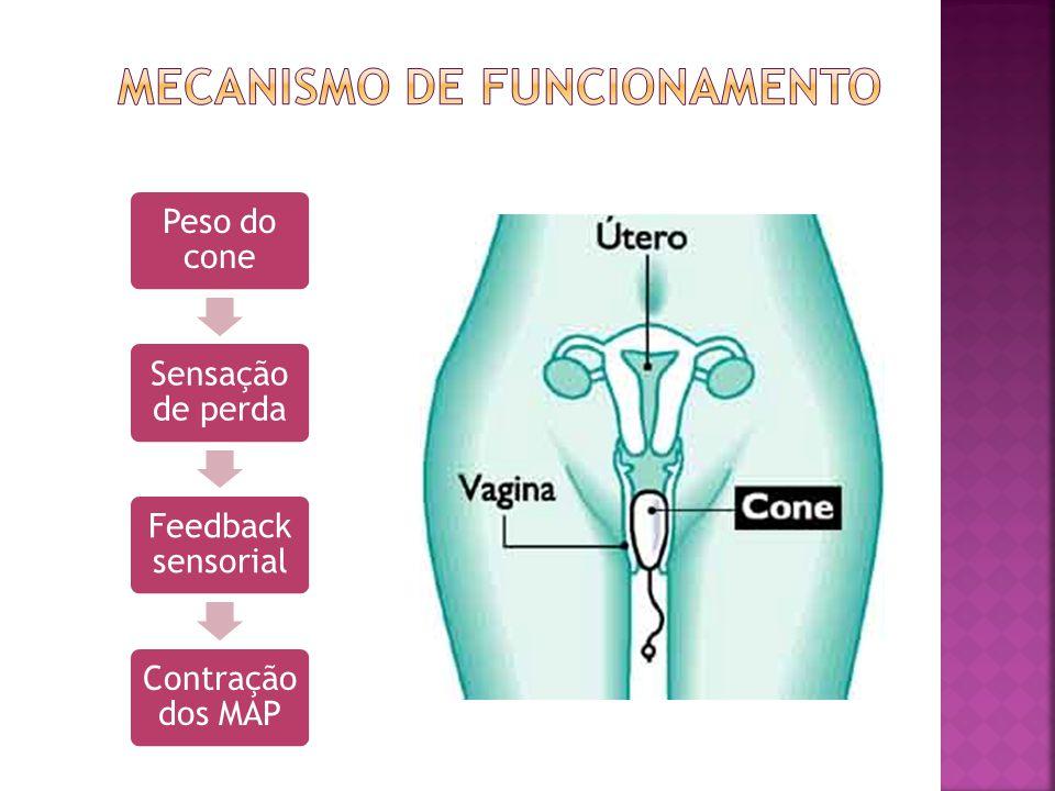  Força de fechamento da uretra;  Resistência e feedback sensorial aos MAP;  Elimina Valsalva;  Distingue a contração de m. perineais de m. sinérgi