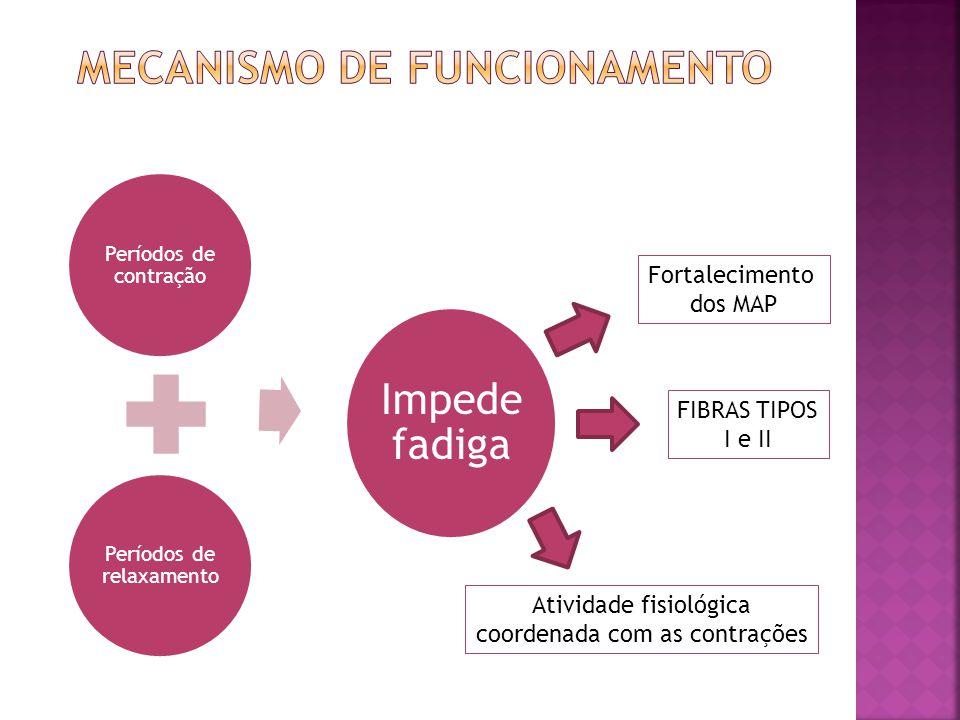 Períodos de contração Períodos de relaxamento Impede fadiga Fortalecimento dos MAP Atividade fisiológica coordenada com as contrações FIBRAS TIPOS I e II