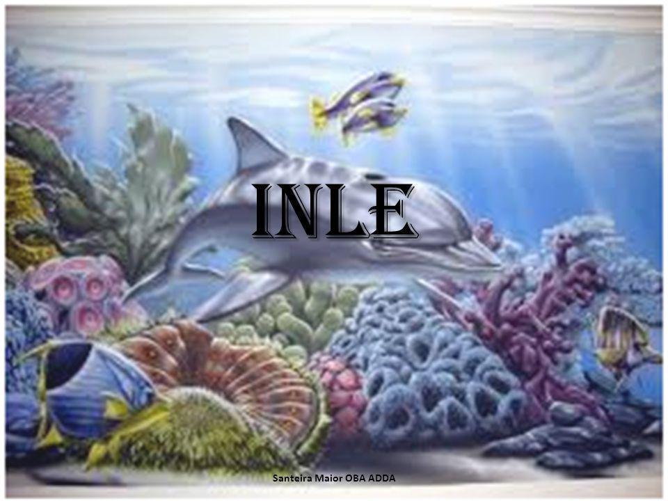 Quem é inle Inle o Erinlé e um Orisha que representa a pesca e a recoleção pre-hortícola.
