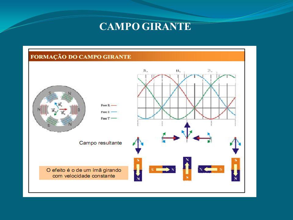 CAMPO GIRANTE