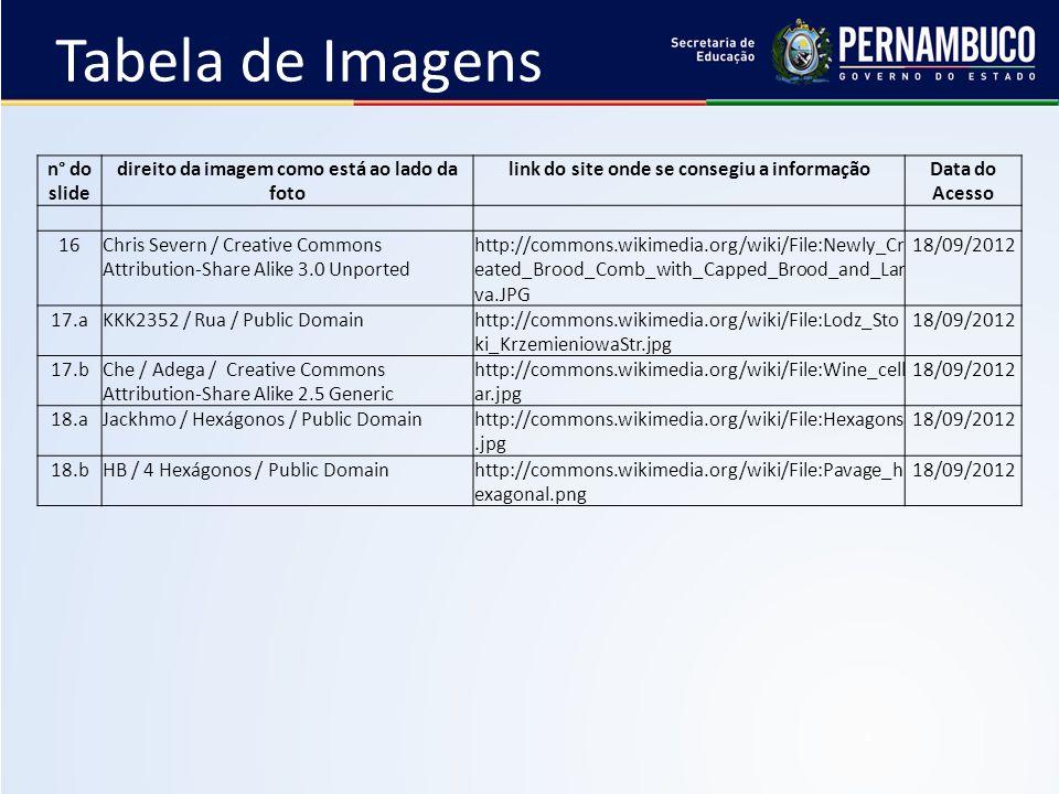 Tabela de Imagens n° do slide direito da imagem como está ao lado da foto link do site onde se consegiu a informaçãoData do Acesso 16Chris Severn / Cr