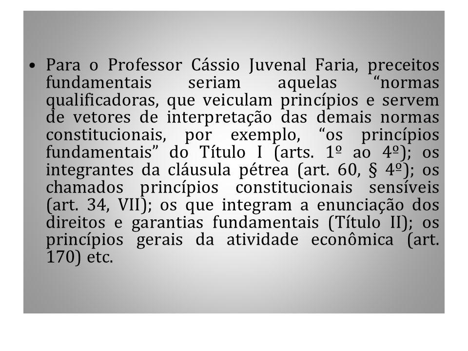 """Para o Professor Cássio Juvenal Faria, preceitos fundamentais seriam aquelas """"normas qualificadoras, que veiculam princípios e servem de vetores de in"""