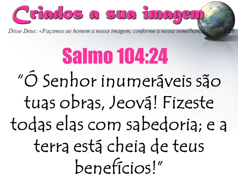 """Criados a sua imagem """"Ó Senhor inumeráveis são tuas obras, Jeová! Fizeste todas elas com sabedoria; e a terra está cheia de teus benefícios!"""" Salmo 10"""