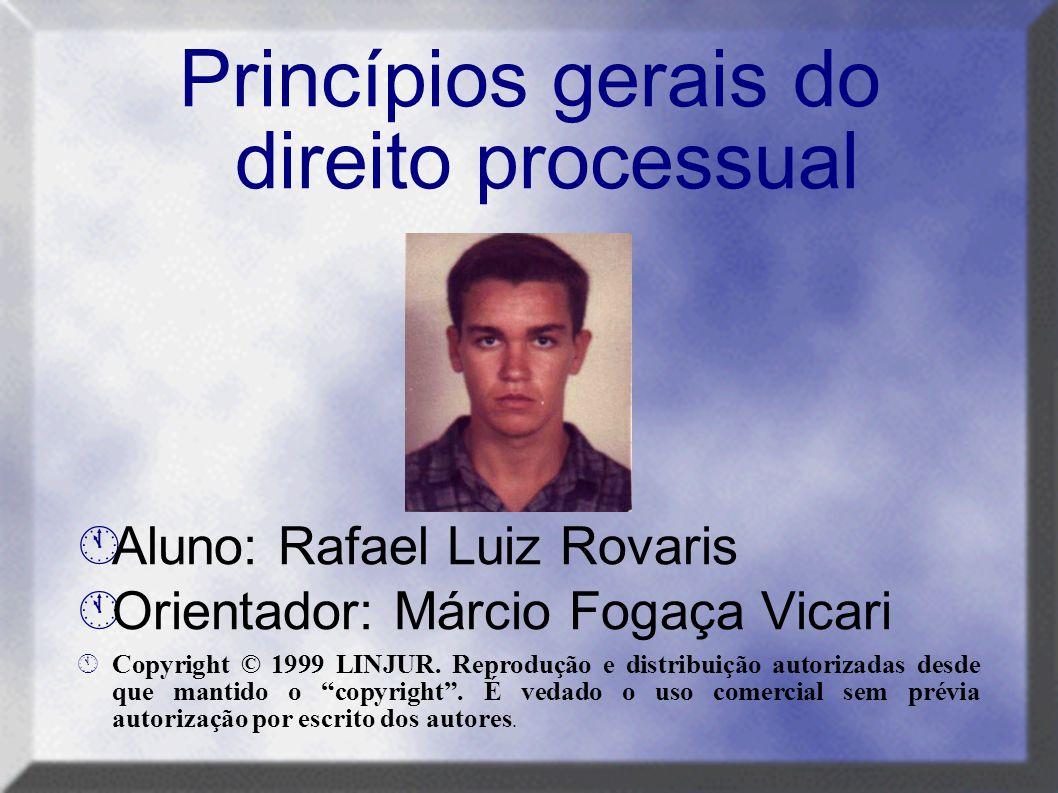 Princípios gerais do direito processual  Aluno: Rafael Luiz Rovaris  Orientador: Márcio Fogaça Vicari ÁCopyright © 1999 LINJUR. Reprodução e distrib