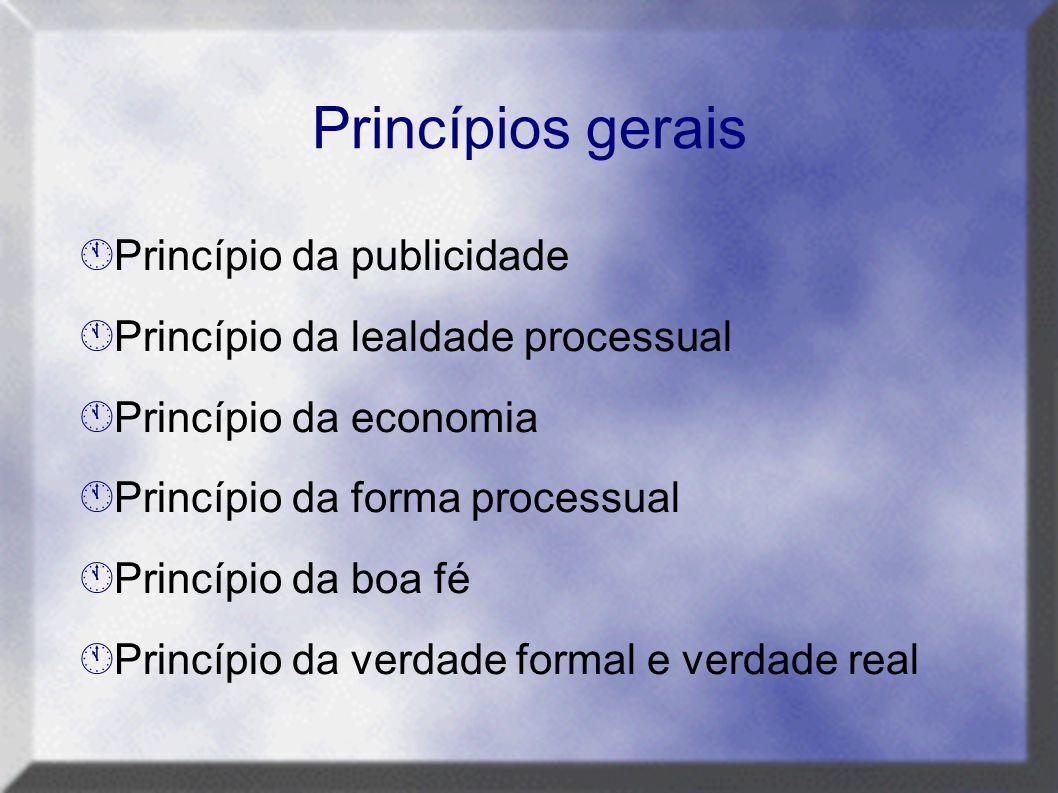  Princípio da publicidade  Princípio da lealdade processual  Princípio da economia  Princípio da forma processual  Princípio da boa fé  Princípi