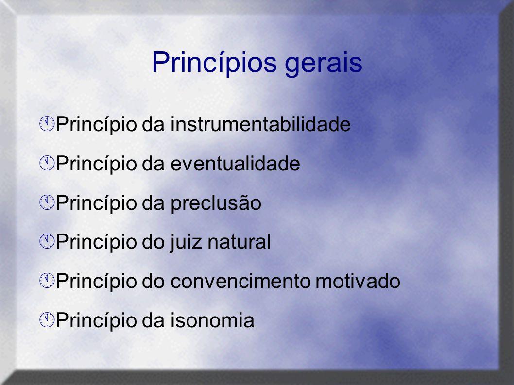 Princípios gerais  Princípio da instrumentabilidade  Princípio da eventualidade  Princípio da preclusão  Princípio do juiz natural  Princípio do