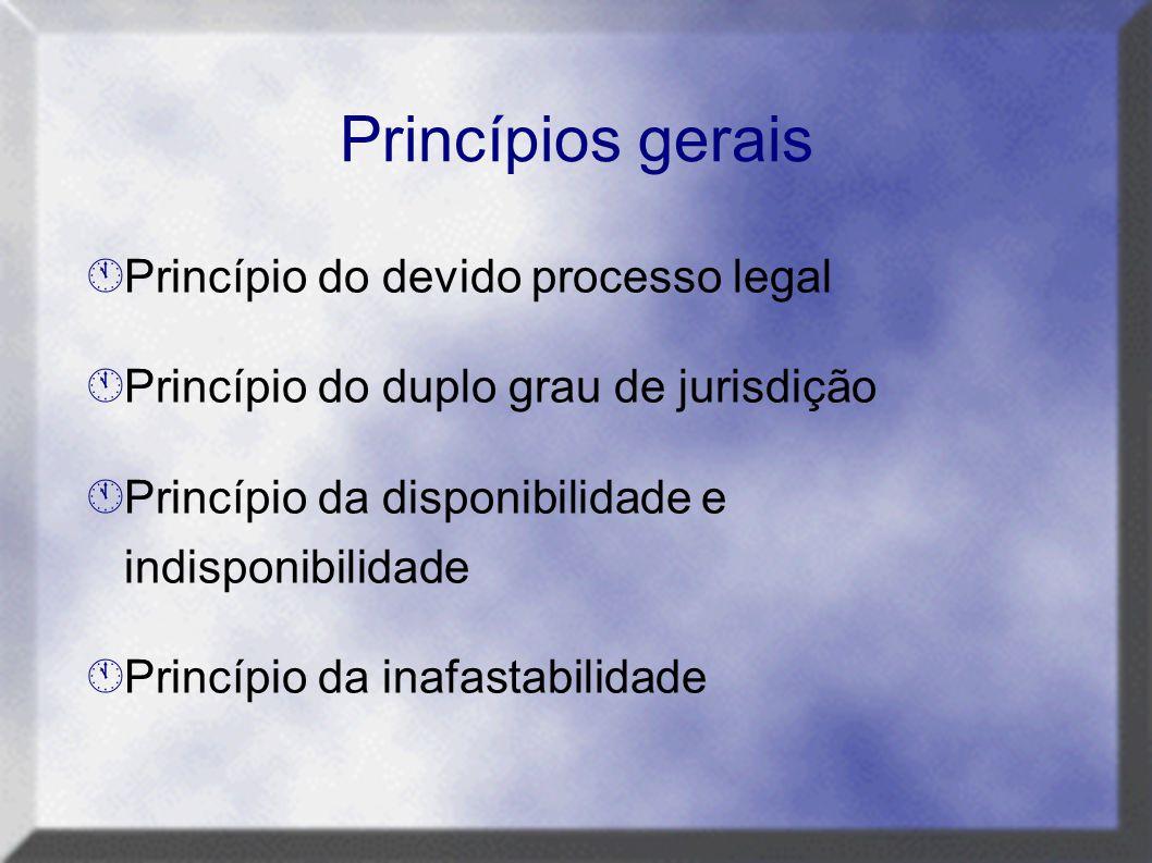 Princípios gerais  Princípio do devido processo legal  Princípio do duplo grau de jurisdição  Princípio da disponibilidade e indisponibilidade  Pr