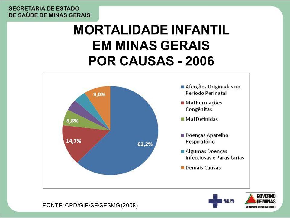 MORTALIDADE INFANTIL EM MINAS GERAIS POR CAUSAS - 2006 FONTE: CPD/GIE/SE/SESMG (2008)