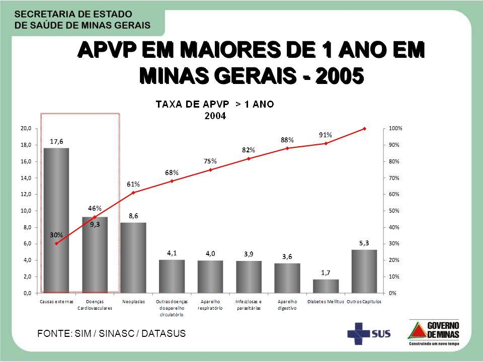APVP EM MAIORES DE 1 ANO EM MINAS GERAIS - 2005 FONTE: SIM / SINASC / DATASUS