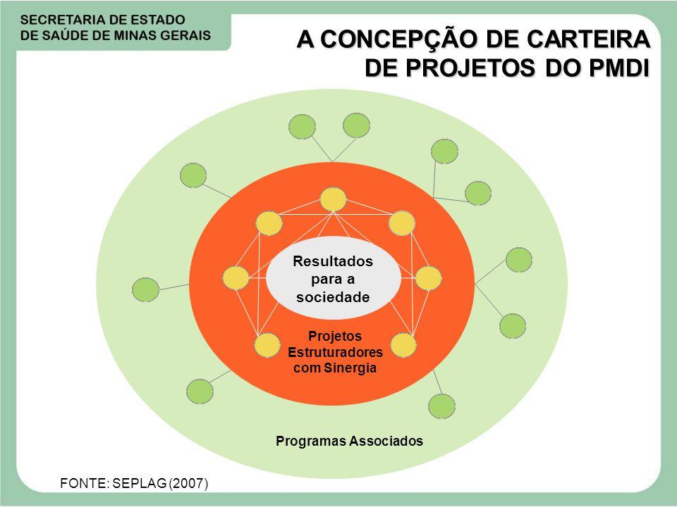 A CONCEPÇÃO DE CARTEIRA DE PROJETOS DO PMDI Programas Associados Projetos Estruturadores com Sinergia Resultados para a sociedade FONTE: SEPLAG (2007)