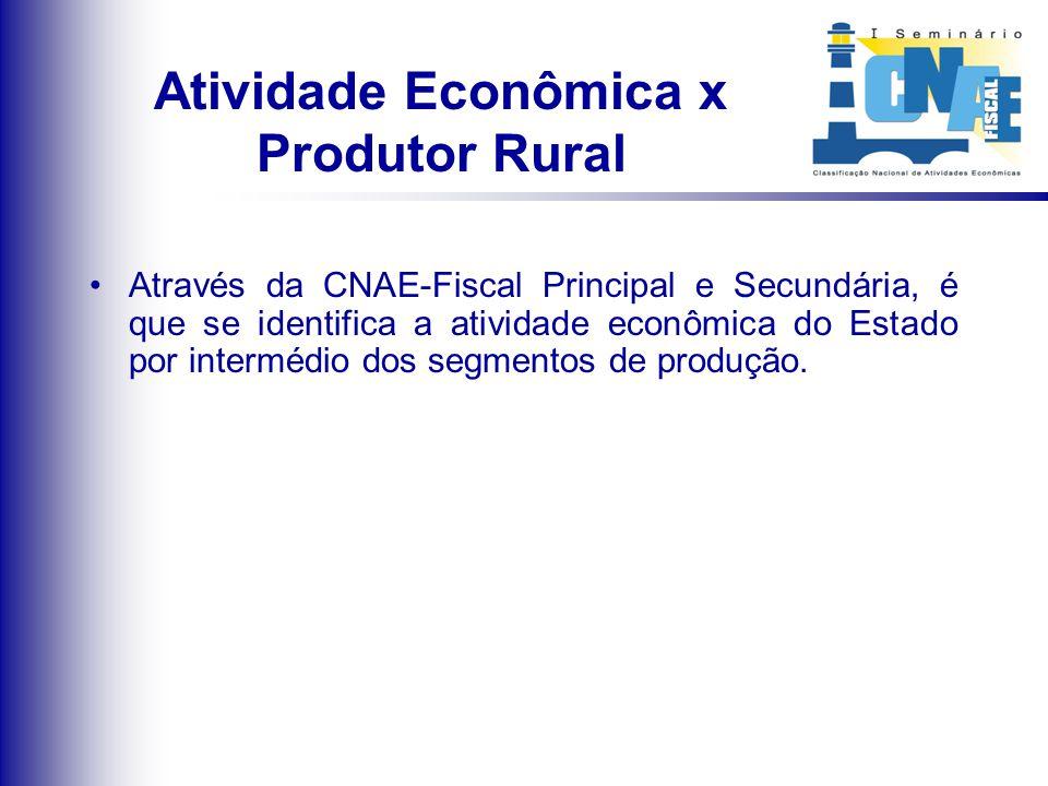 Atividade Econômica x Produtor Rural Através da CNAE-Fiscal Principal e Secundária, é que se identifica a atividade econômica do Estado por intermédio