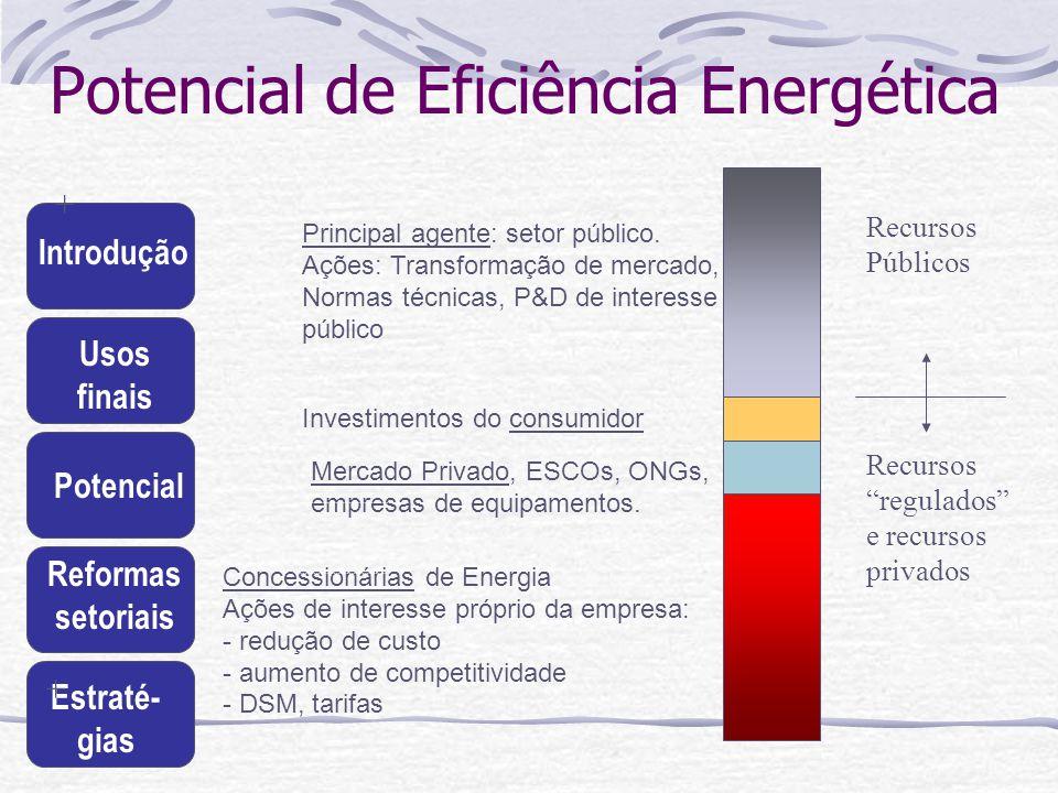 Introdução Usos finais Potencial Reformas setoriais Estraté- gias Concessionárias de Energia Ações de interesse próprio da empresa: - redução de custo