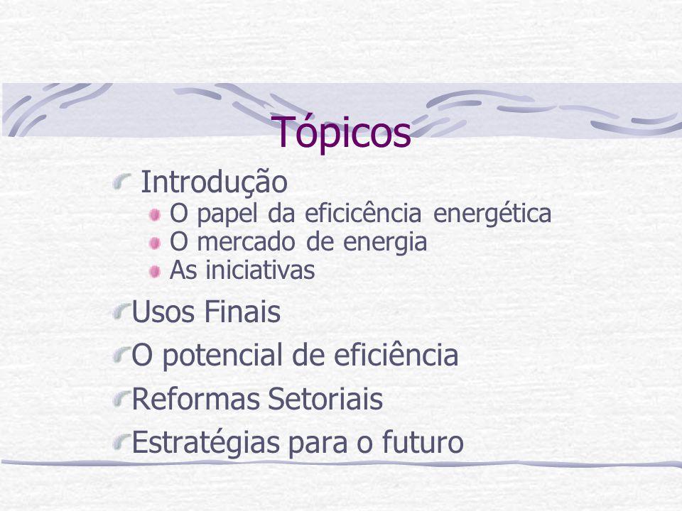 Tópicos Introdução O papel da eficicência energética O mercado de energia As iniciativas Usos Finais O potencial de eficiência Reformas Setoriais Estr