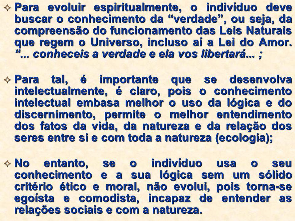 """ Para evoluir espiritualmente, o indivíduo deve buscar o conhecimento da """"verdade"""", ou seja, da compreensão do funcionamento das Leis Naturais que re"""