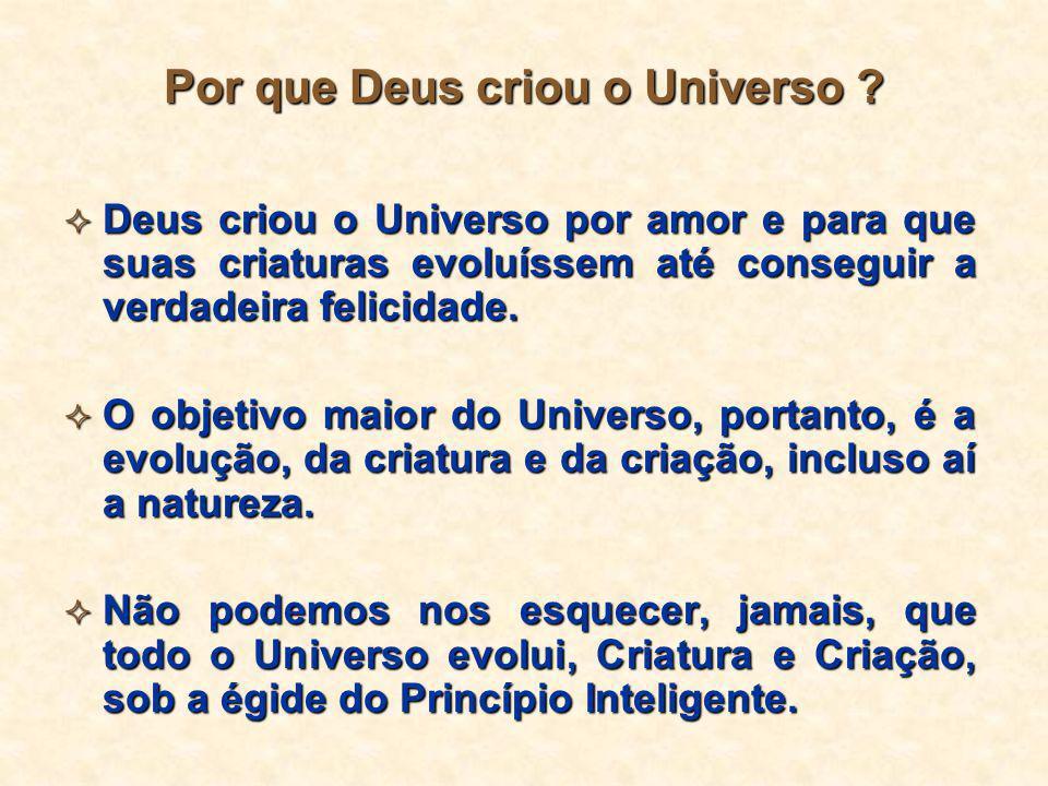  Deus criou o Universo por amor e para que suas criaturas evoluíssem até conseguir a verdadeira felicidade.  O objetivo maior do Universo, portanto,