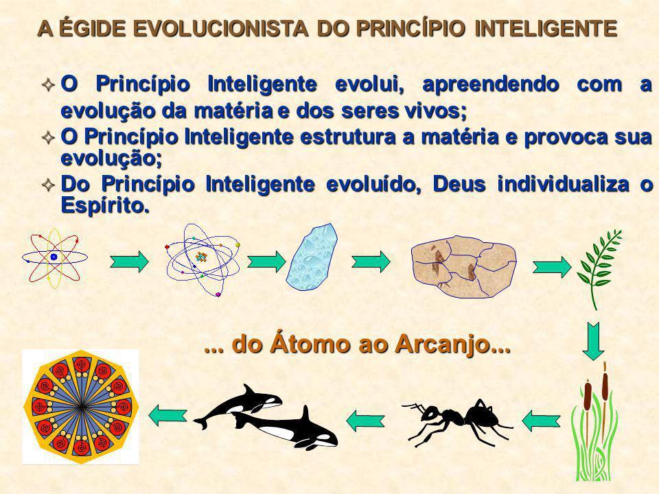  O Princípio Inteligente evolui, apreendendo com a evolução da matéria e dos seres vivos;  O Princípio Inteligente estrutura a matéria e provoca sua