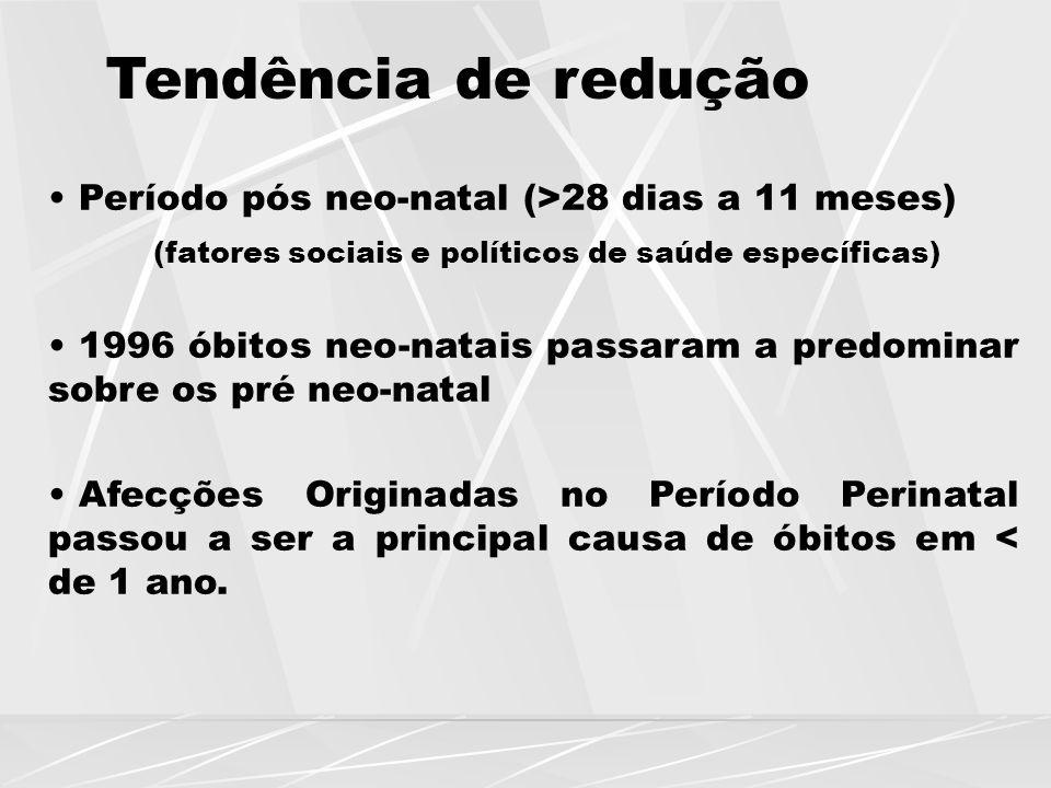 Tendência de redução Período pós neo-natal (>28 dias a 11 meses) (fatores sociais e políticos de saúde específicas) 1996 óbitos neo-natais passaram a