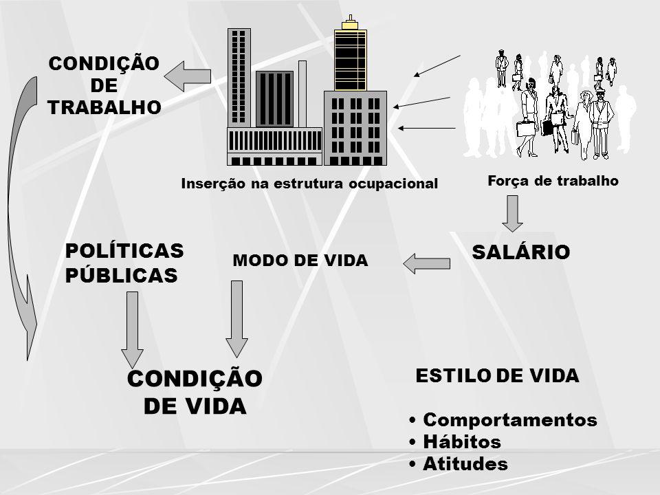 CONDIÇÃO DE TRABALHO POLÍTICAS PÚBLICAS MODO DE VIDA SALÁRIO Inserção na estrutura ocupacional Força de trabalho CONDIÇÃO DE VIDA ESTILO DE VIDA Compo