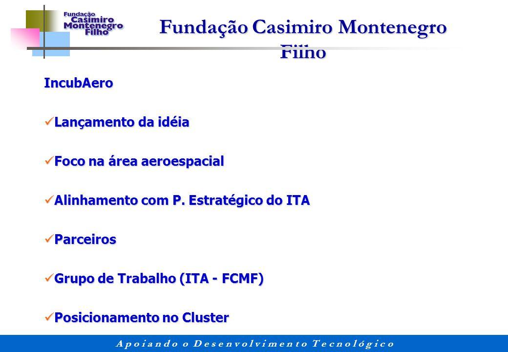 Fundação Casimiro Montenegro Filho A p o i a n d o o D e s e n v o l v i m e n t o T e c n o l ó g i c o IncubAero Lançamento da idéia Lançamento da i