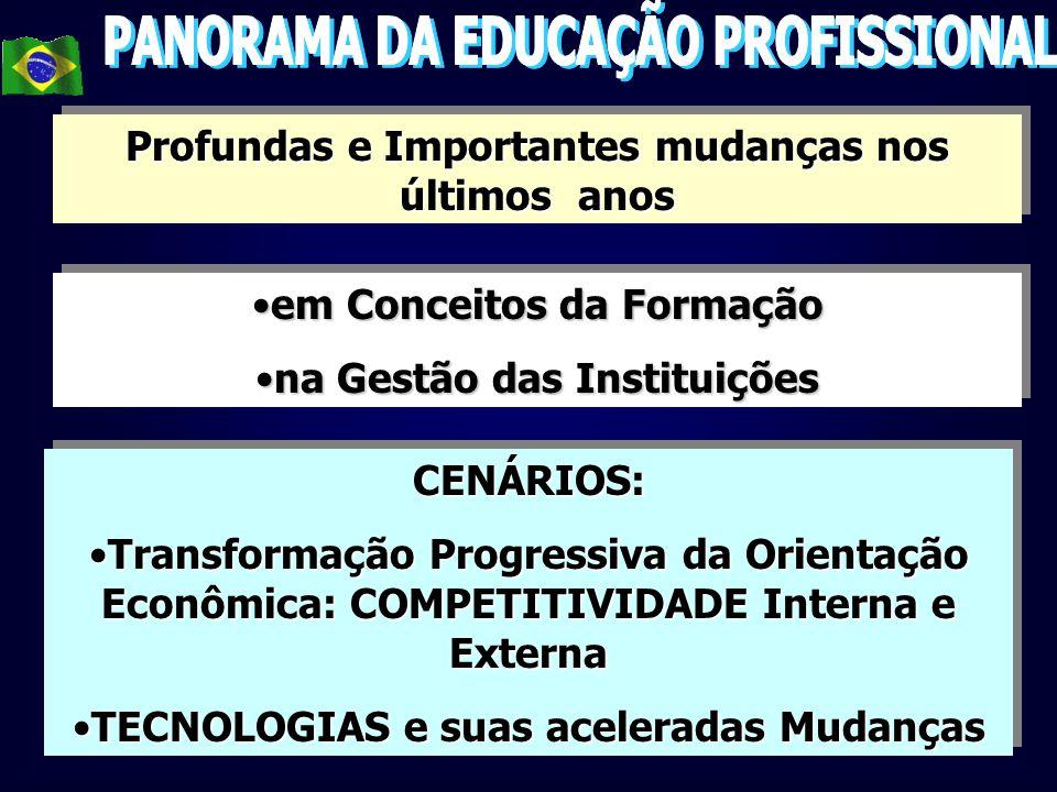 MERCADO DE TRABALHO NO BRASIL CENÁRIOS...