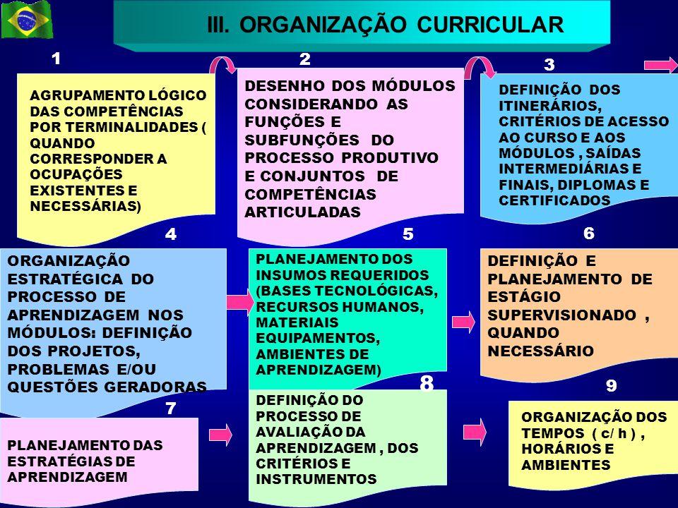 12 III. ORGANIZAÇÃO CURRICULAR AGRUPAMENTO LÓGICO DAS COMPETÊNCIAS POR TERMINALIDADES ( QUANDO CORRESPONDER A OCUPAÇÕES EXISTENTES E NECESSÁRIAS) DESE