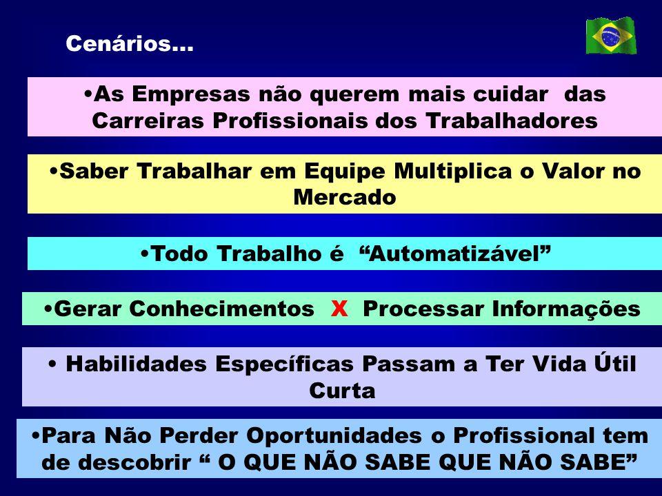 ÓRGÃO NORMATIVO DO SISTEMA DE ENSINO Rede de Informações MINISTÉRIO DA EDUCAÇÃO MINISTÉRIO DA EDUCAÇÃO CNE/MEC DIRETIVOGERENCIALOPERACIONAL SUBSISTEMA DE AVALIAÇÃO E CERTIFICAÇÃO DE COMPETÊNCIAS PROFISSIONAIS - SAC NÍVEISNÍVEIS UNIDADE AVALIADORA INSTITUIÇÃO FORMADORA INSTITUIÇÃO FORMADORA UNIDADE OU INSTITUIÇÃO CERTIFICADO- RA COMISSÕES TÉCNICAS PROFISSIONAIS SETORIAIS ( Temporárias) CQ CTP