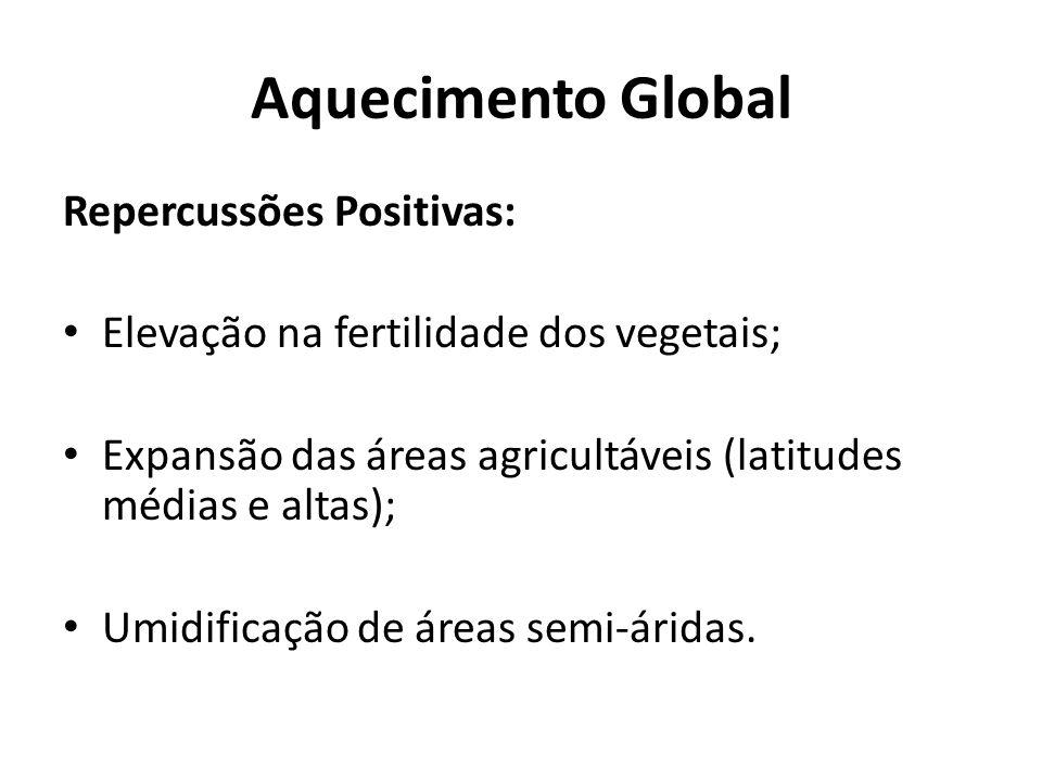 Aquecimento Global Repercussões Positivas: Elevação na fertilidade dos vegetais; Expansão das áreas agricultáveis (latitudes médias e altas); Umidific