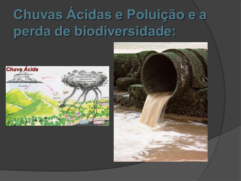 Chuvas Ácidas e Poluição e a perda de biodiversidade: