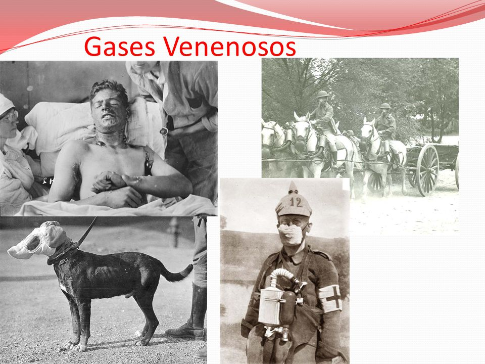 Gases Venenosos