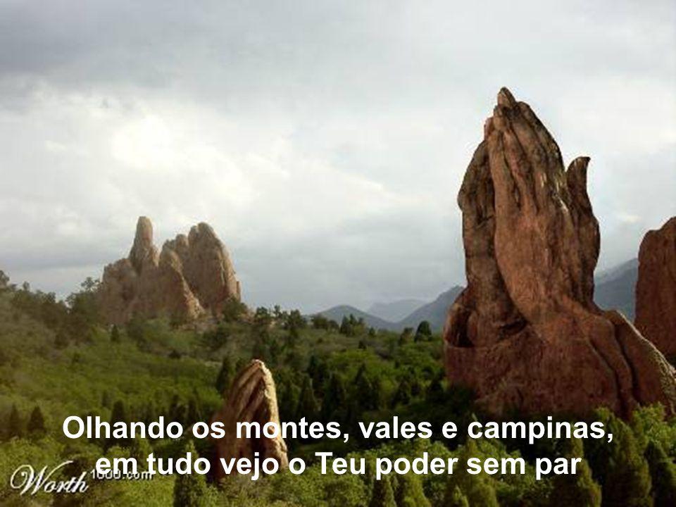Olhando os montes, vales e campinas, em tudo vejo o Teu poder sem par