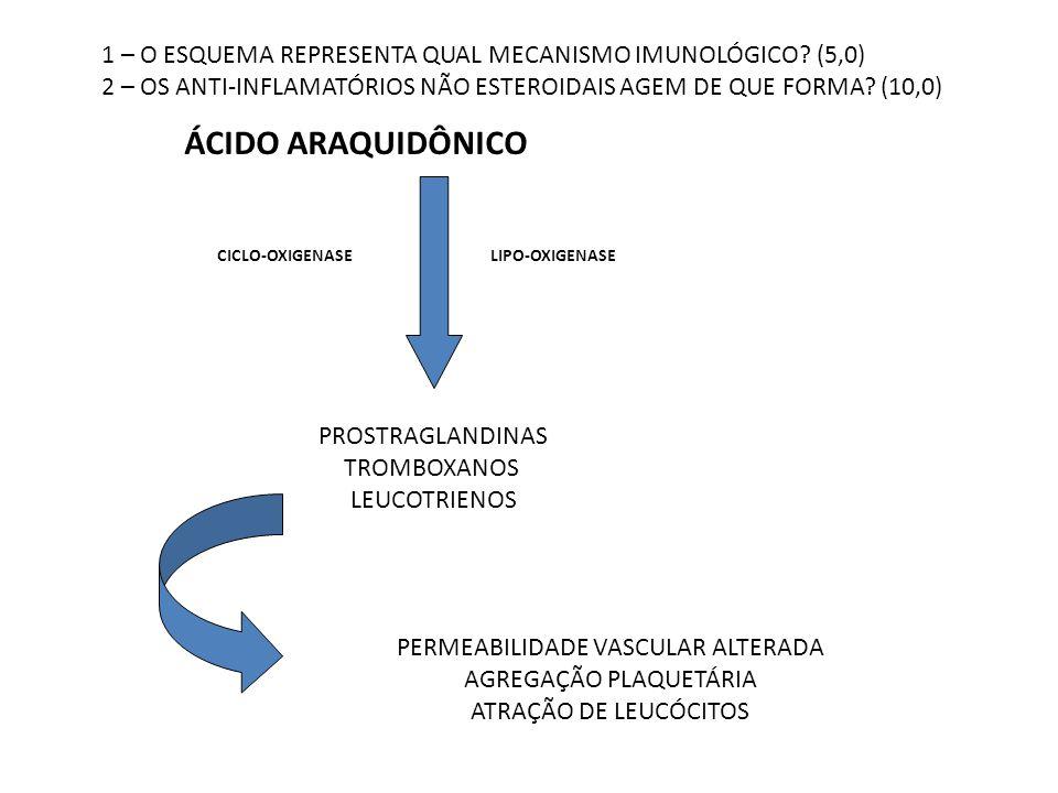 ÁCIDO ARAQUIDÔNICO CICLO-OXIGENASELIPO-OXIGENASE PROSTRAGLANDINAS TROMBOXANOS LEUCOTRIENOS PERMEABILIDADE VASCULAR ALTERADA AGREGAÇÃO PLAQUETÁRIA ATRA