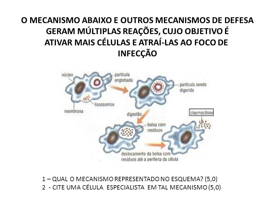 O MECANISMO ABAIXO E OUTROS MECANISMOS DE DEFESA GERAM MÚLTIPLAS REAÇÕES, CUJO OBJETIVO É ATIVAR MAIS CÉLULAS E ATRAÍ-LAS AO FOCO DE INFECÇÃO 1 – QUAL