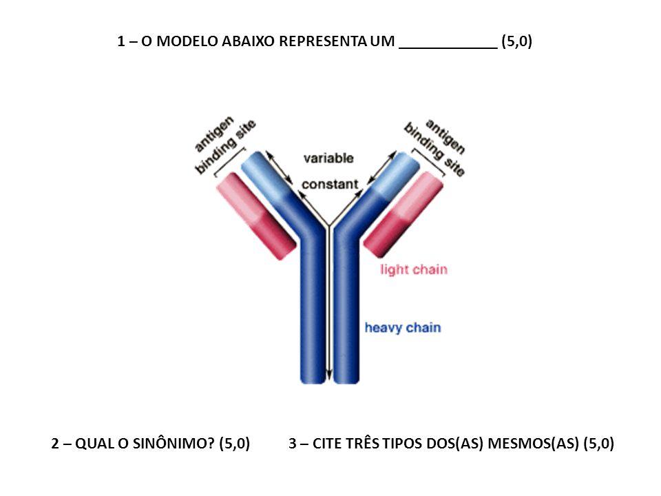 1 – O MODELO ABAIXO REPRESENTA UM ____________ (5,0) 2 – QUAL O SINÔNIMO? (5,0) 3 – CITE TRÊS TIPOS DOS(AS) MESMOS(AS) (5,0)