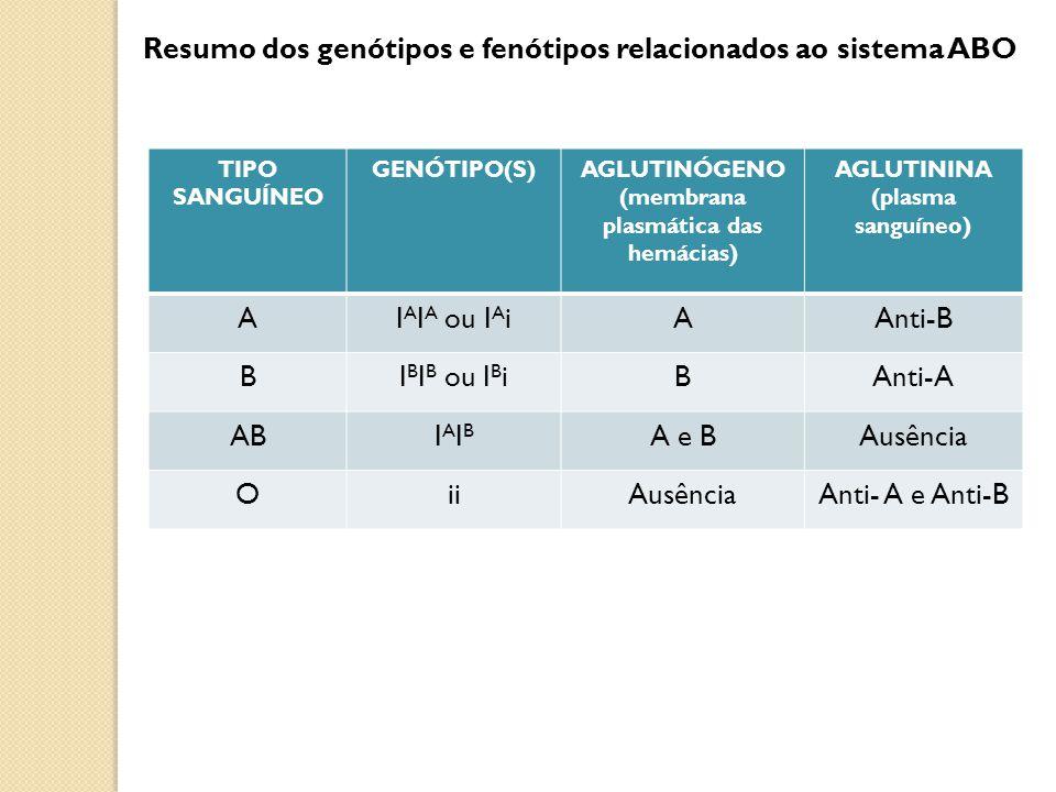 TIPO SANGUÍNEO GENÓTIPO(S)AGLUTINÓGENO (membrana plasmática das hemácias) AGLUTININA (plasma sanguíneo) AI A I A ou I A iAAnti-B BI B I B ou I B iBAnt