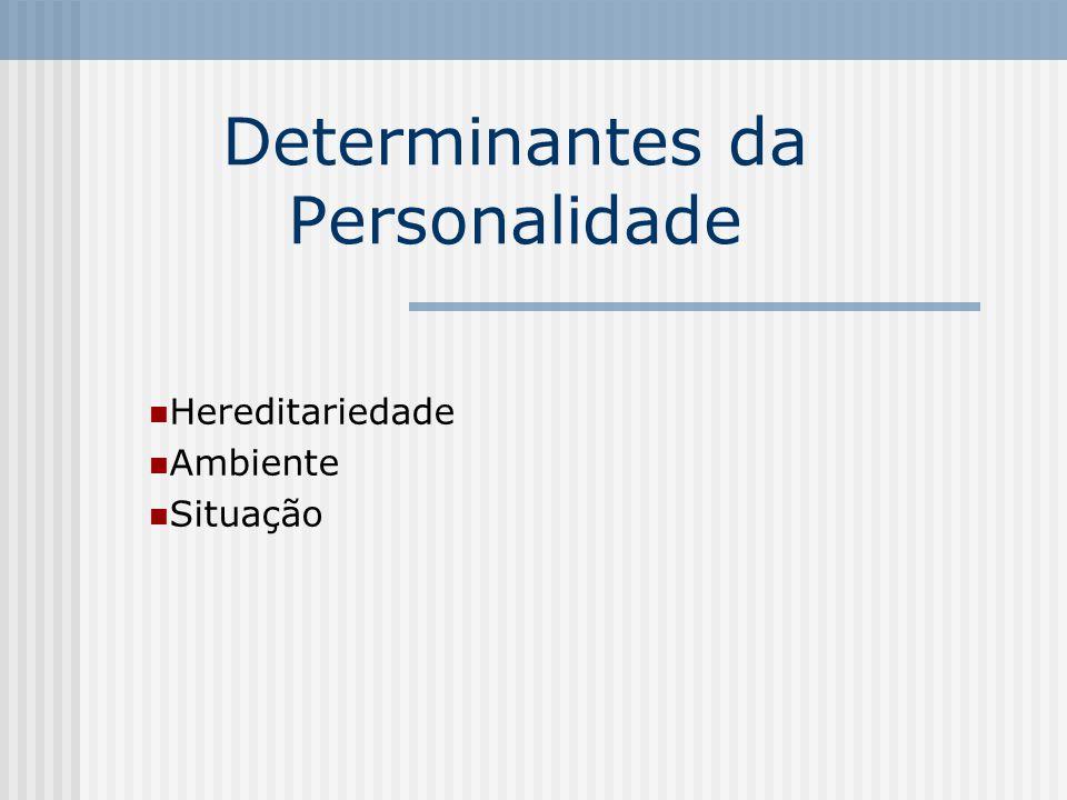 Determinantes da Personalidade Hereditariedade Ambiente Situação